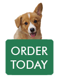 order-pup2